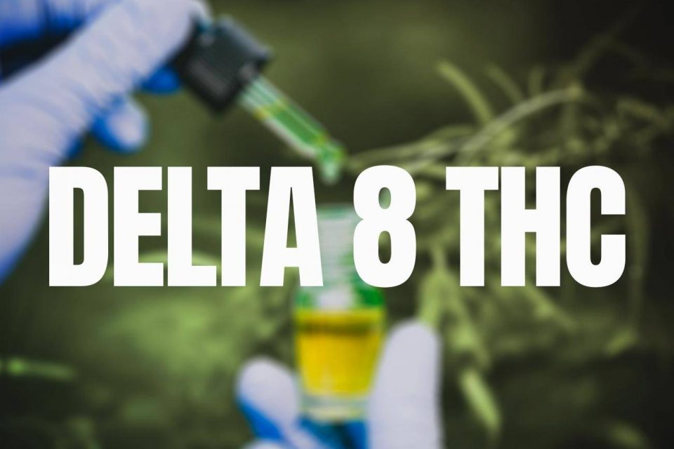Why need to read the honest reviews of top Delta-8 THC brands?